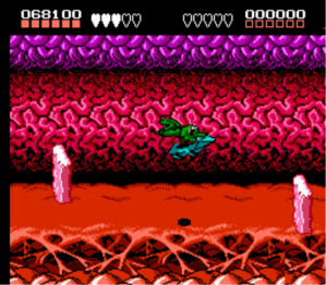 battletoads_nes